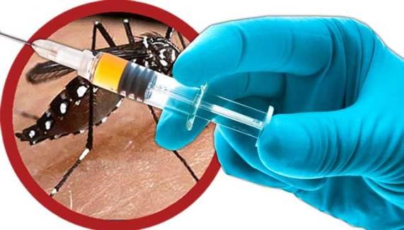 vacinadengue